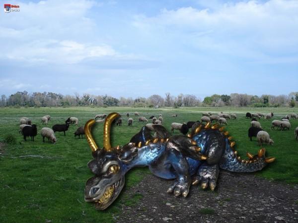 dragon (en polymère fimo) dans un champ de moutons dans la plaine du Fium'Orbu