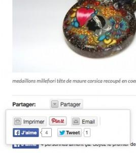 blog-partage-bouton