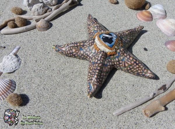 étoile de mer vue dans son élément naturel