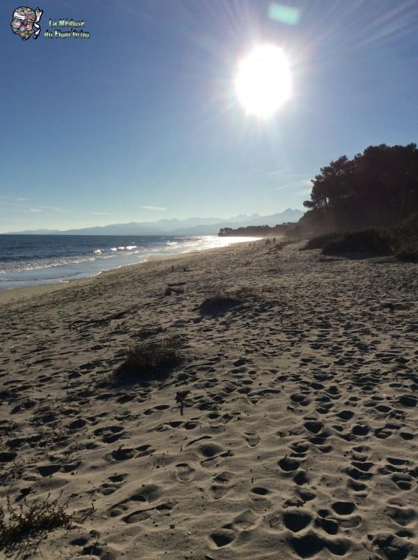 plage de Ghisonaccia un matin d'hiver