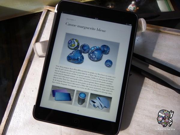 vue d'une page sur l'iPad 8 pouces