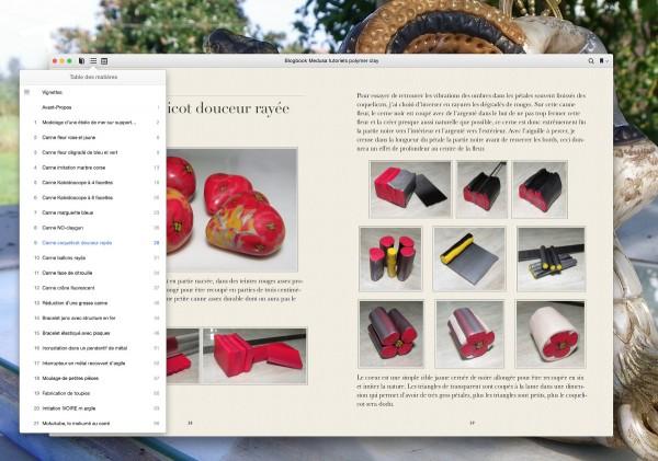 livre ouvert avec le sommaire cliqué sur iBooks format iMac