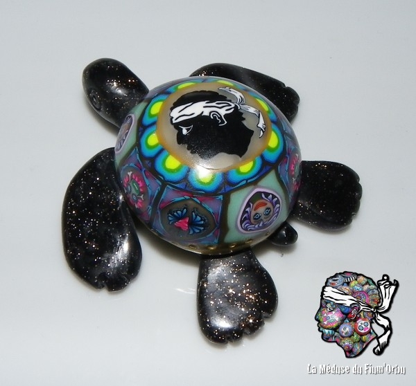 Une version de tortue marine aurait débarqué en Corse?