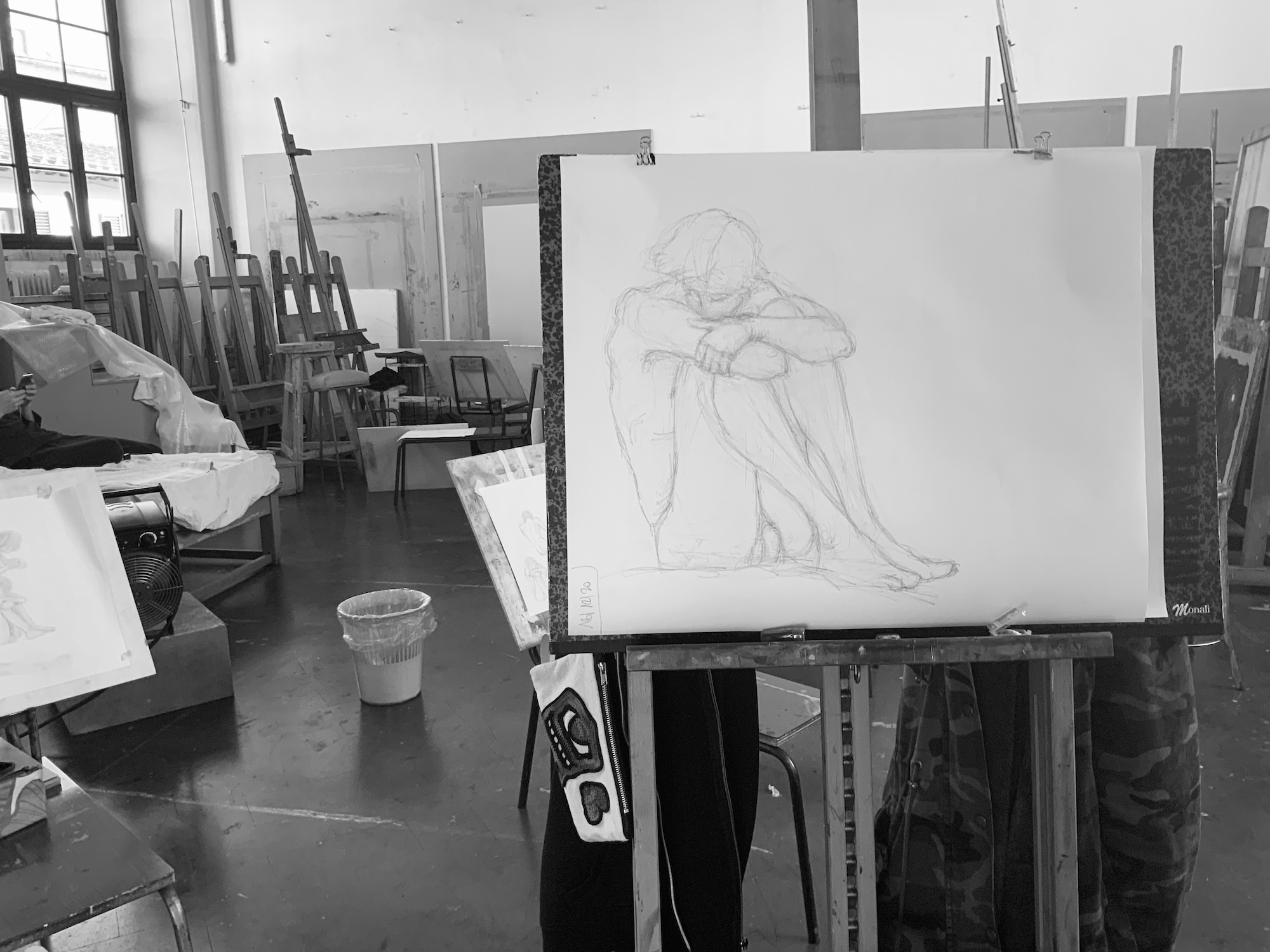 Anatomia artistica