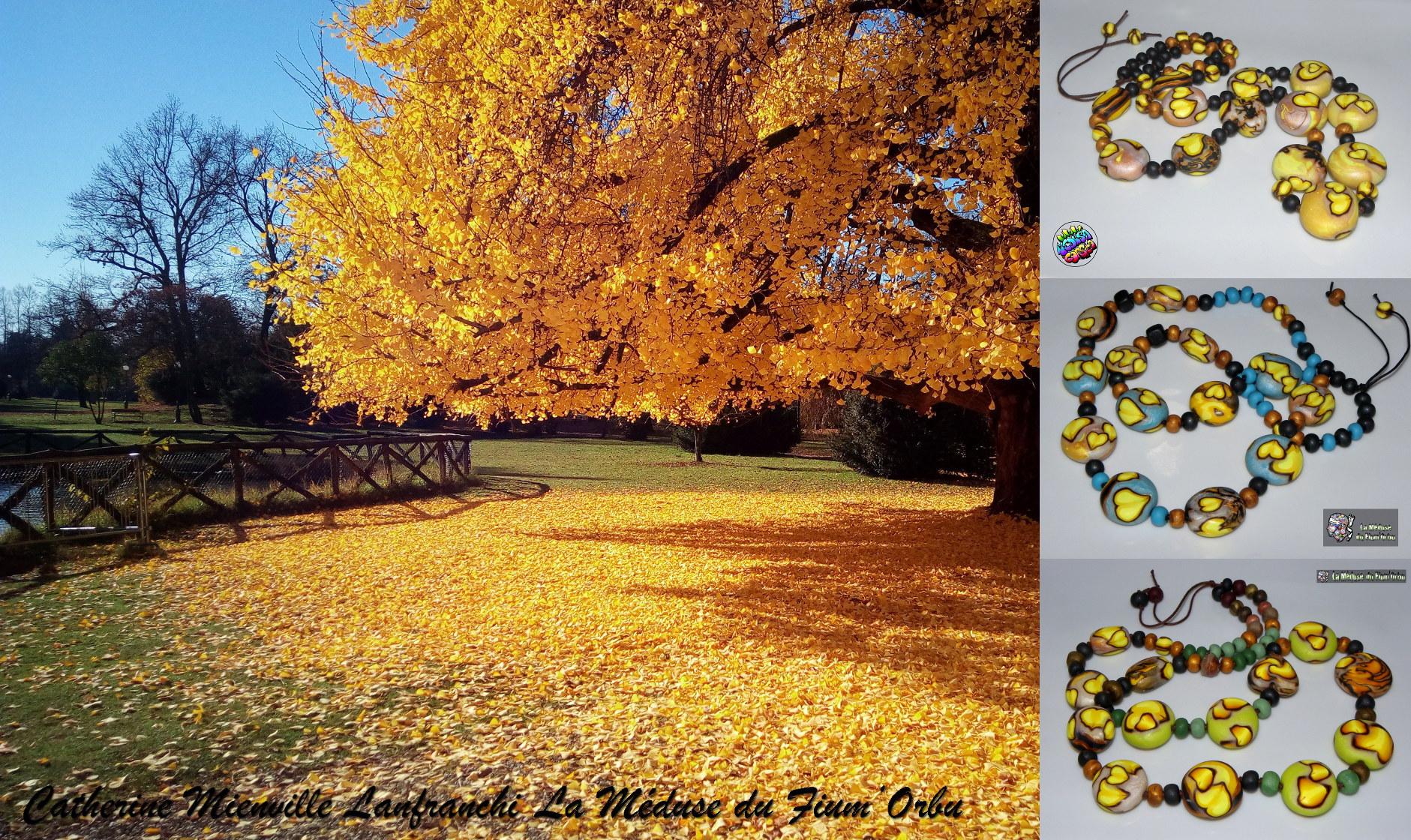 Ginko, Le bleu de l'automne c'est le jaune